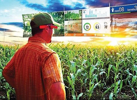 Цифровое земледелие